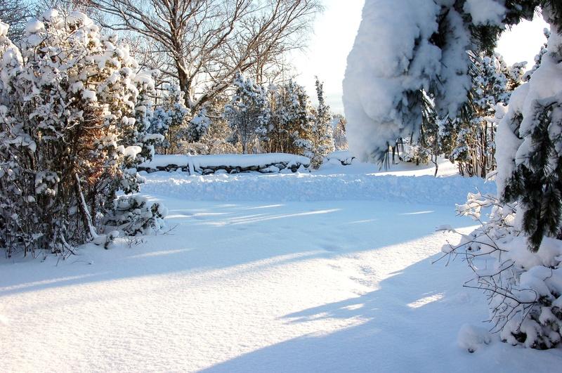 winterview from Kibuvitsa