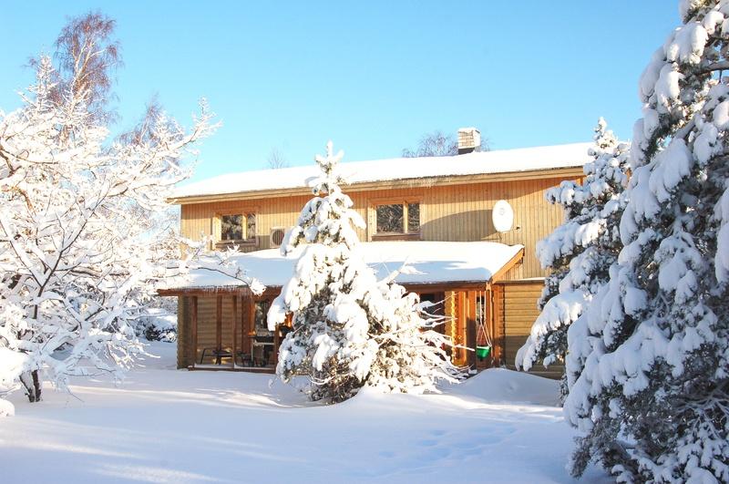 wonderful winter 2010